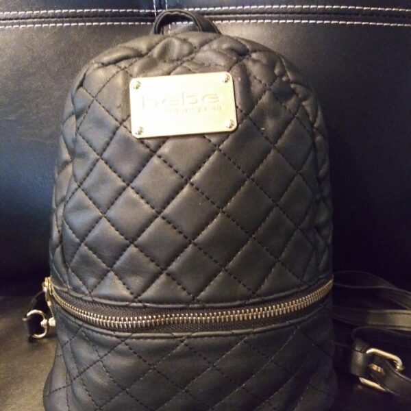 Curvy Girl Closet- Bebe Backpack